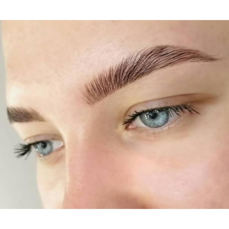 EYEBROW ARCHITECTURE-12 HOURS